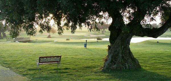MAXIMUM Golfreisen Golfplatz Quinta da Cima