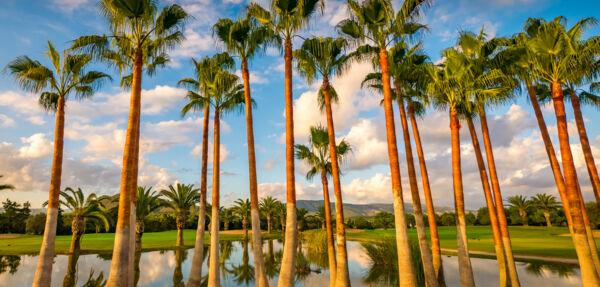 MAXIMUM Golfreisen T Golf & Country Club - Poniente