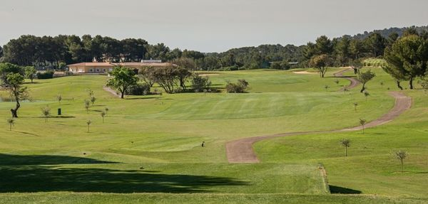 MAXIMUM Golfreisen Son Quint Golf Club