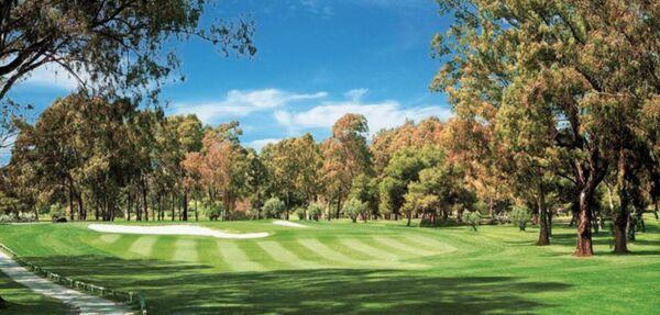 MAXIMUM Golfreisen Atalaya Golf & Country Club